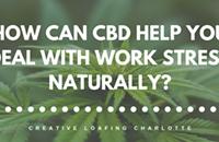 Turning to CBD to beat work stress
