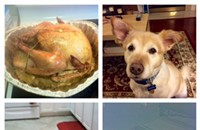 Thanksgiving horror stories from readers