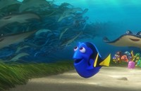 <i>Finding Dory</i> forgets consistency