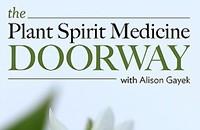 The Plant Spirit Medicine Doorway