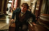 <i>Fantastic Beasts and Where to Find Them</i>: Creature comforts