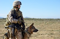 <i>Megan Leavey</i> goes beyond the battlefield