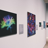 Creative Takes on the Gallery Wall from Florida Art Galleries