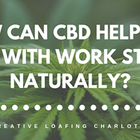 Turning to CBD to beat work stress