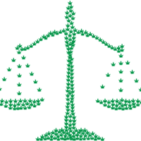 Interested In Starting A Cannabis Business? Read This