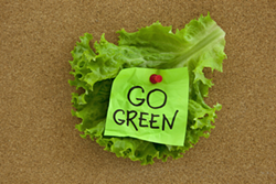 Lettuce leaf on board with go green sign tacked on - Uploaded by ajnewso2