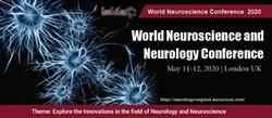 world neuroscience conference - Uploaded by Gracelily