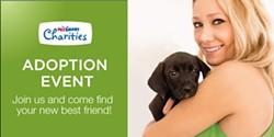 5084ddb9_15-charities-6595_social_banner_dog.jpg