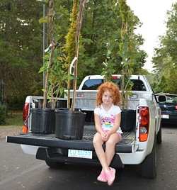 6b31265a_girl-and-trees-truck-bed.jpg