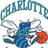 Why the Charlotte Hornets shouldn't return
