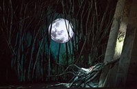 One gorgeous fish out of water: Lyric Opera's <i>Rusalka</i>