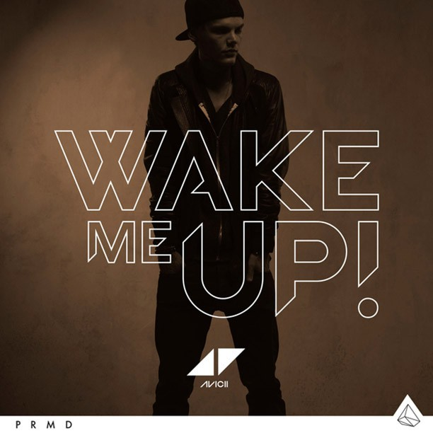 avicii_wake_me_up.jpg