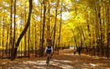 Best Fall Bike Ride