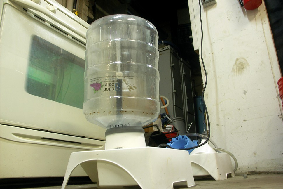 Brewers use these recirculating fountains to clean fermentation vessels. The brown flecks near the neck of this carboy are hop residue from a previous batch.