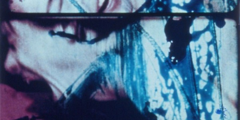 Carolee Schneemann's Fuses plays in the adults-only portion of this year's cat-related experimental film program.