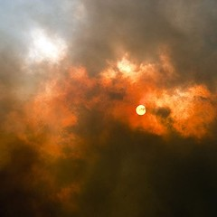 Colorado forest fires