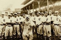 Cubs mascots: A dark and tragic history