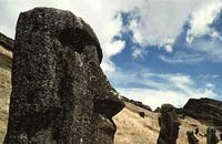 Easter Island: Did the rats destroy it?