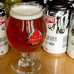 Evanston's Temperance Beer Company debuts on retail shelves with Gatecrasher English IPA