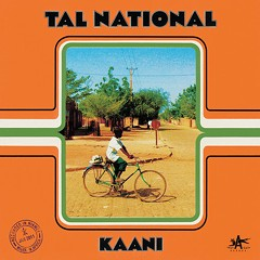 "Exclusive song premiere: ""Tchana"" by the Niger guitar band Tal National"