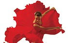 Fall Arts Guide 2010: Dance