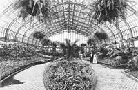 Food, music, and more at the Garfield Park Conservatory's 100th birthday party
