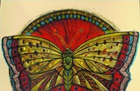 Gig poster of the week: A beautiful butterfly takes off for Shuggie Otis