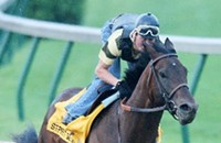 Handicapping the Derby