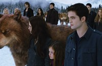 I survived the <i>Twilight</i> movies and all I got was this stupid blog post