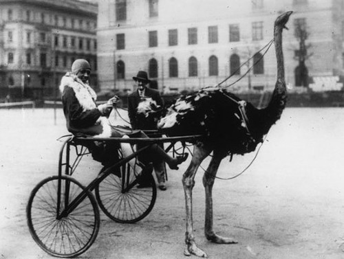 Josephine Baker had the sweetest ride in Paris.