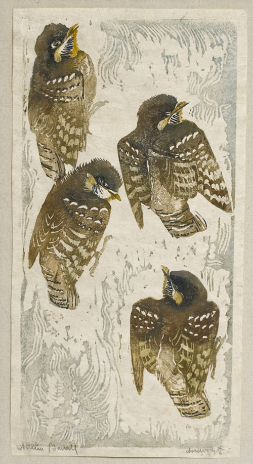 2_polish_museum_Adam_Bunsch__Piskleta__Fledgling___1936__color_woodcut_on_paper__31_x_16_cm.jpg
