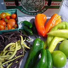 No Soup & Bread at the Hideout this week--but sustainably raised vegetables