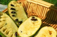 How to grow pawpaws, and other food news bites