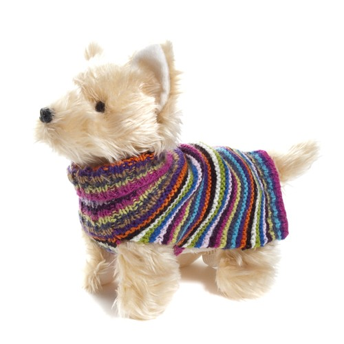 rainbow_doggy_sweater.jpg