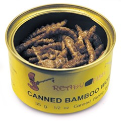 Someone voluntarily eats bamboo worms at Pops for Champagne