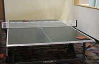 The $100 Ping Pong Table