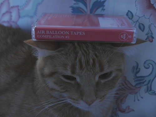 This cat approves of Air Balloon Tapes first compilation