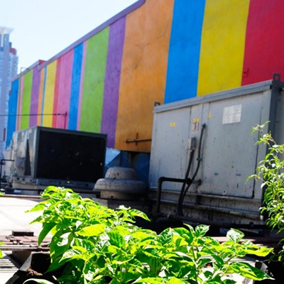The rooftop garden at Carnivale