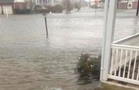 Glimpsing the speed limit of news during Hurricane Sandy