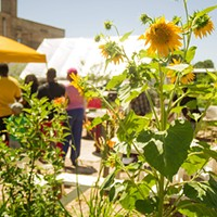 Community gardens beautify urban space, but some seek to transform urban society