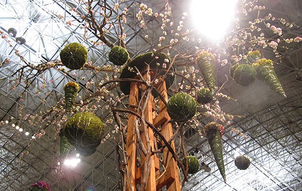 The Chicago Flower and Garden Show is at Navy Pier from 3/12-3/20. - MAGGIE NOT MARGARET VIA FLICKR