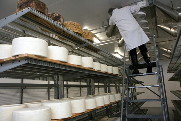 Rogers checks on the cooling units in the cheese cave. - JULIA THIEL