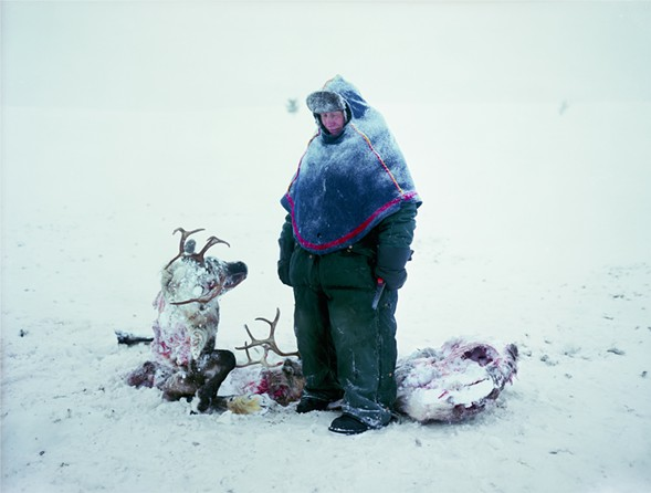 A Sami man in Sweden mourns the loss of two reindeer that starved after locking horns in a fight for dominance. Larsen lived with the man and his family for two years, working as their housekeeper. - ERIKA LARSEN/NATIONAL GEOGRAPHIC
