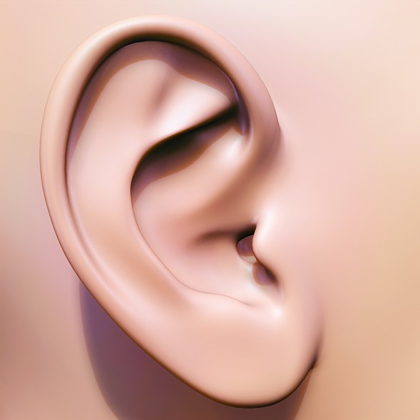 """""""Dicks don't fit in ear canals, and blasting semen into someone's ear could cause a nasty ear infection."""" - METRO CREATIVE"""