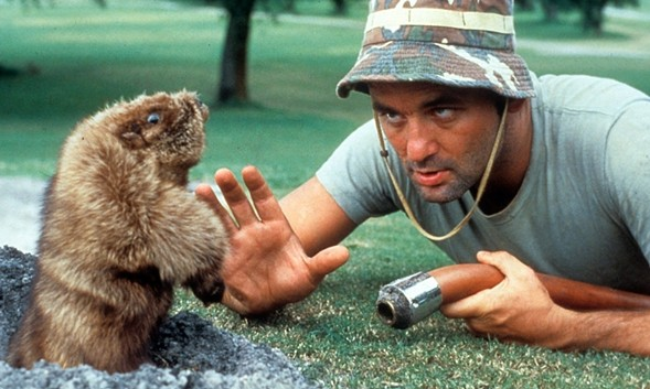 Bill Murray says hello to his furry friend in Caddyshack on Tue 6/13 at Music Box.
