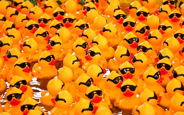 The Windy City Rubber Ducky Derby, on Thursday 8/3 at the Wrigley Building Plaza, benefits Special Olympics Illinois. - DAVID DENNIS