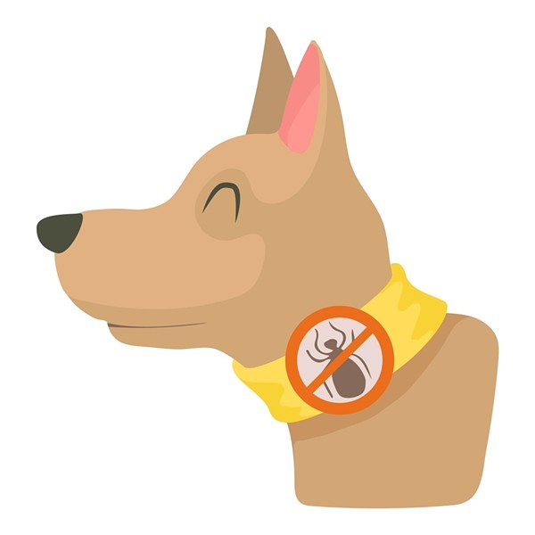 Fleas and ticks are no longer a problem for Fido. Why can't we have the same luxury? - PETS WIKI