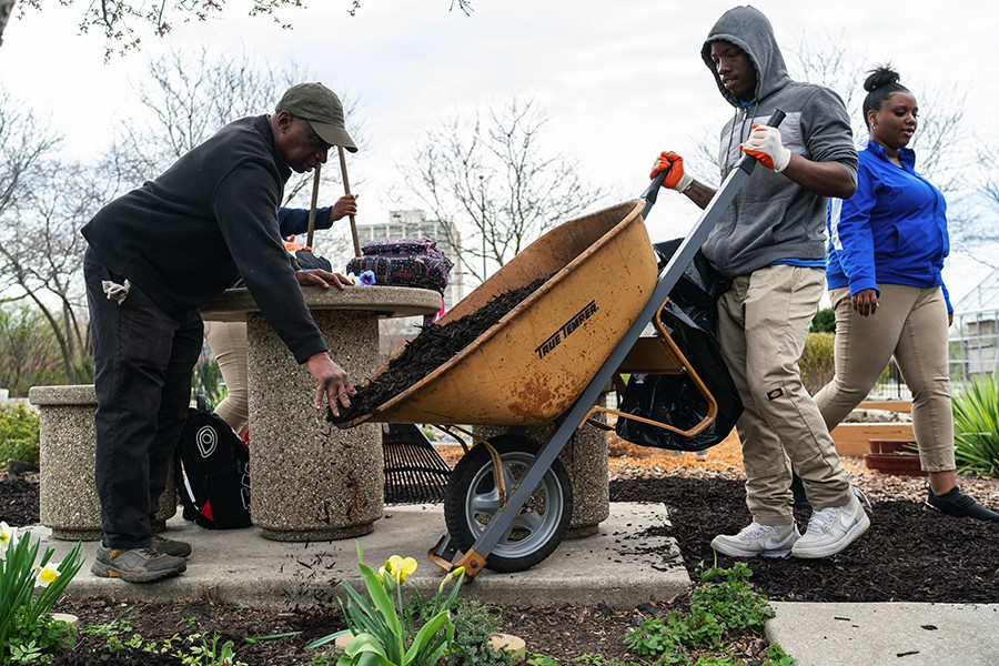 At the botanic garden he helped create, William Hill gets assistance from Hyde Park Academy student Darius Triplett moving mulch as part of a day of volunteer work for seniors at the high school on April 22, 2019. - MAX HERMAN