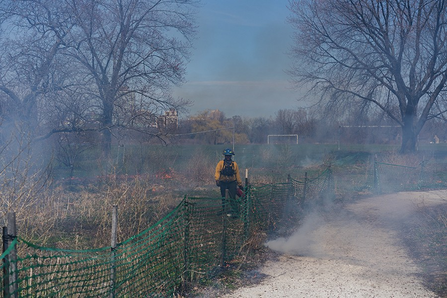 A group with the Army Corps of Engineers sets a prescribed burn in Jackson Park on April 16th, 2019, just east of the Obama Presidential Center (OPC) construction site. This four year restoration project aims to bring back native species of plants like the Michigan Lilly and Butterfly Weed which would be specifically in sight of the OPC. - MAX HERMAN
