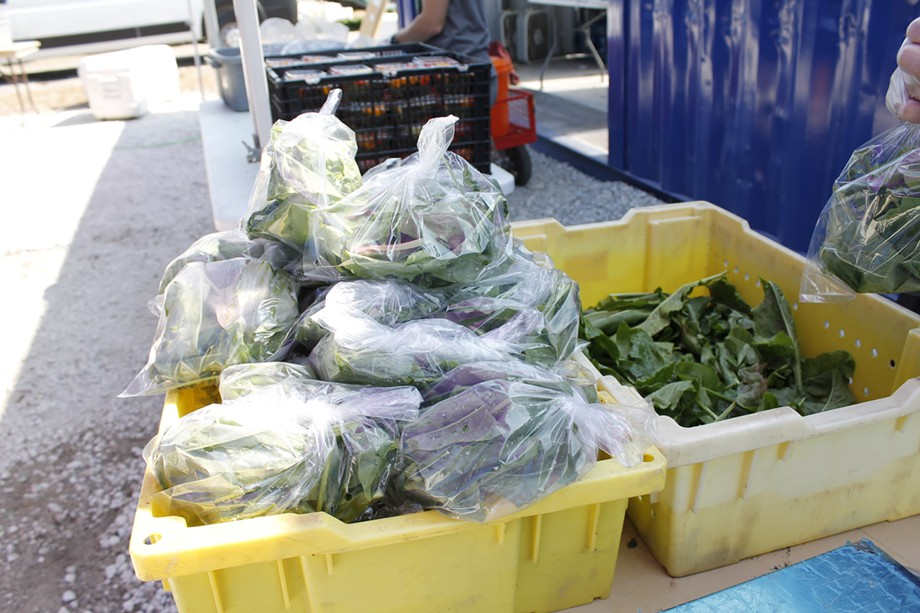 The CSA boxes, which are either picked up or delivered on Saturdays, contain roughly a dozen seasonal vegetables from UGC farms, along with microgreens, fruit, and additional vegetables from community partners and farmers with UGC's incubator, Farmers for Chicago. - ADAM M. RHODES